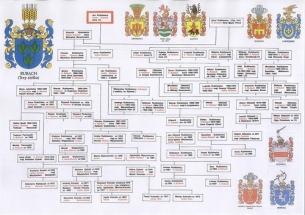 drzewo_genealogiczne_1