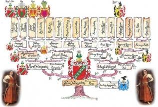 drzewo_genealogiczne_2